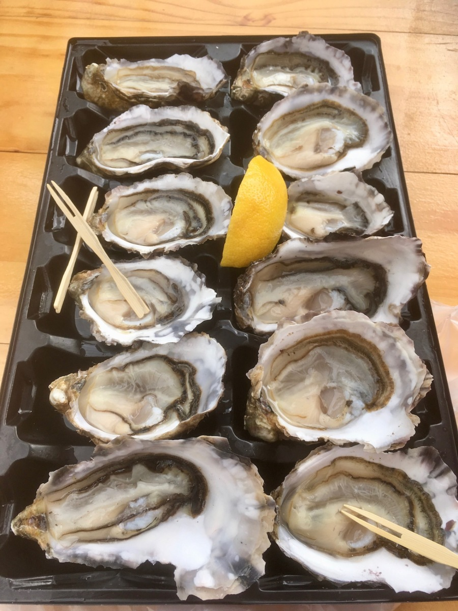 Tray of one dozen Bruny Island oysters with lime adn timber picks