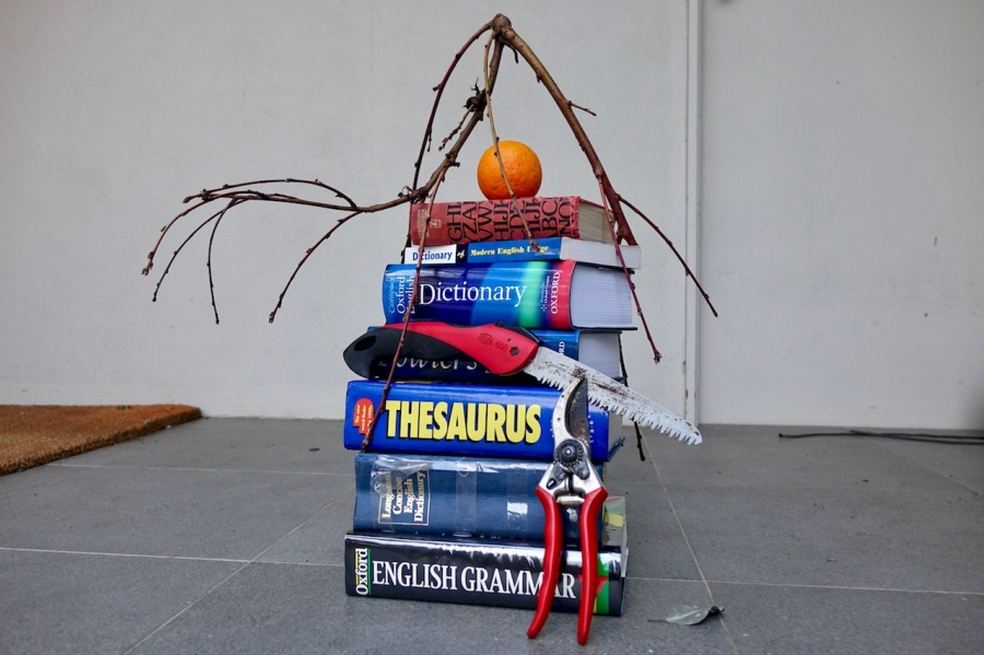pile of dictionaries, pruning implements and an orange