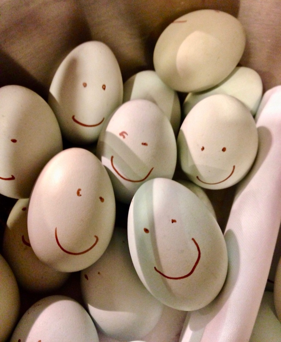 picture of a basket of eggs with faces drawn on them